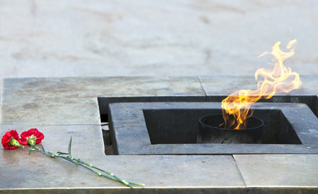 tomb of the unknown soldier: Russia. St. Petersburg. Field of Mars. Eternal flame