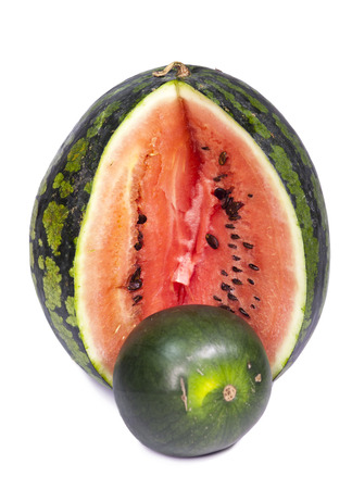 dwarfish: Two water-melons of various grades - big and dwarfish,small depth of sharpness, focus on a crust of a big water-melon
