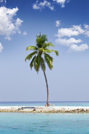 Lonely Palm Tree On The Tiny Island In Sea Maldives Stock Photo Picture And Royalty Free Image 52965482