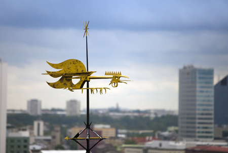 guild hall: Old city, Tallinn, Estonia. A old weather vane rooster, cock bird over the city Stock Photo