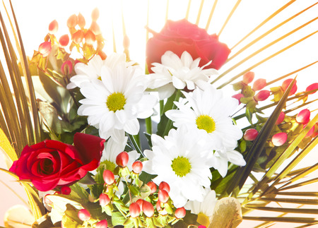 chamomiles: Bright bouquet with chamomiles and roses