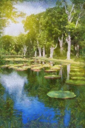 lake in park with Victoria amazonica, Victoria regia. Mauritius. Stock Photo