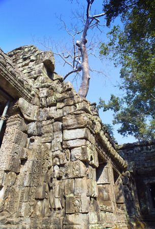 Preah Khan(it is translated as A sacred sword). Trees and ruins of the temple, Siem Reap, Cambodia Banco de Imagens