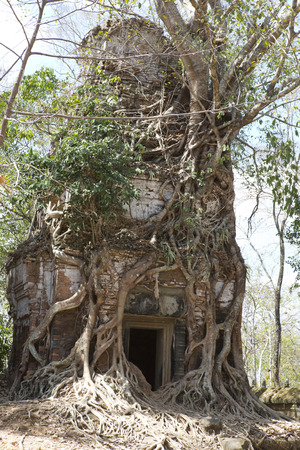 destroyed covered with roots of trees temple Prasat Chrap in the Koh Ker temple complex, Siem Reap, Cambodia Stock fotó