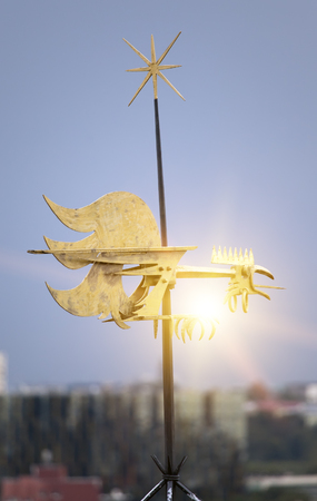 Old city, Tallinn, Estonia. A medieval weather vane rooster, cock bird over the city