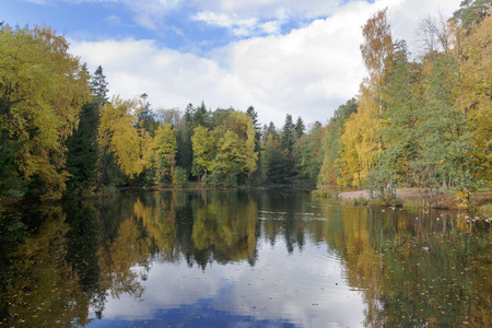 The bright autumn wood is reflected in the lake