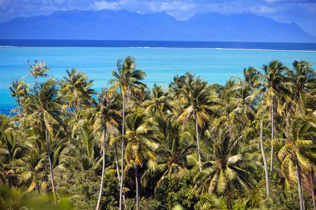lagoon of island Bora Bora, Polynesia. Mountains, the sea, palm trees. 스톡 콘텐츠