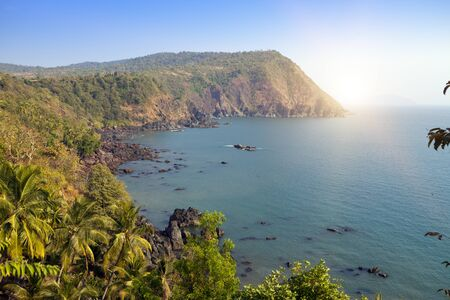 Goa. India. Beautiful view from the steep shore to the jungle and the sea