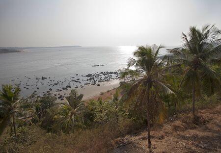 India. Goa.  Palm trees, sea, beach Stock Photo