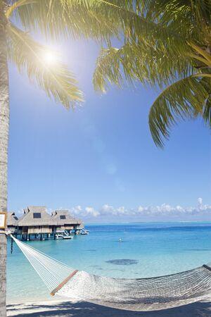 View of the sandy beach with palm trees and hammok, Bora Bora, French Polynesia 스톡 콘텐츠