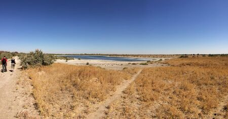 Salt lake surrounded by stale grass. Uzbekistan