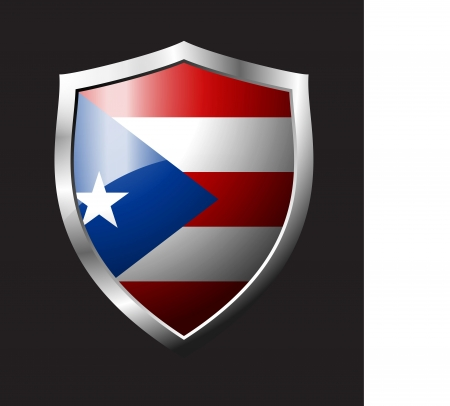 shield flag star Vector