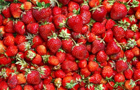 strawberies: much ripe strawberies isolated on white background Stock Photo