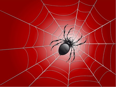cobwebby: black spider on wed  illustration