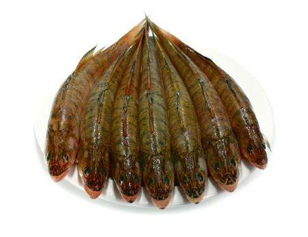 fresh raw fish isolated on white background photo