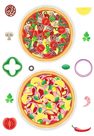 pizza and components vector illustration isolated on white background illustration