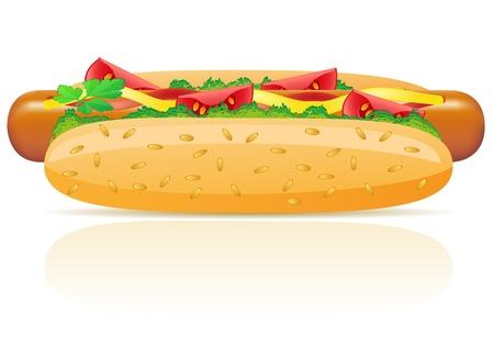 hotdog vector illustration isolated on white background Stock Illustration - 12235920