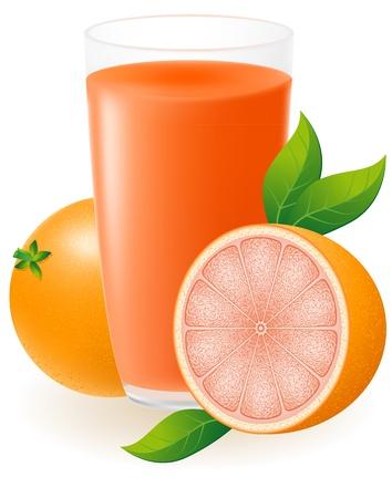 grapefruit juice: grapefruit juice vector illustration isolated on white background Stock Photo