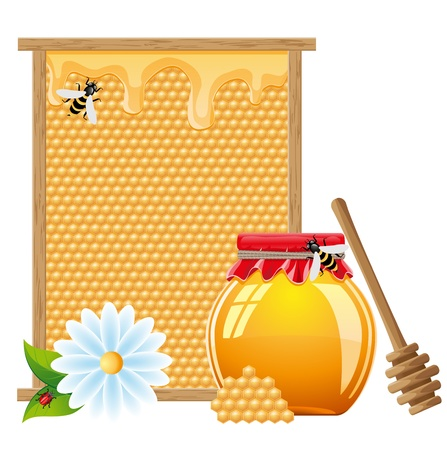 natural honey vector illustration isolated on white background Stock Photo