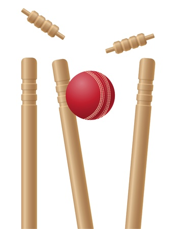 cricet wickets and ball illustration isolated on white background Banco de Imagens