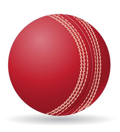 cricket ball: cricet ball illustration isolated on white background