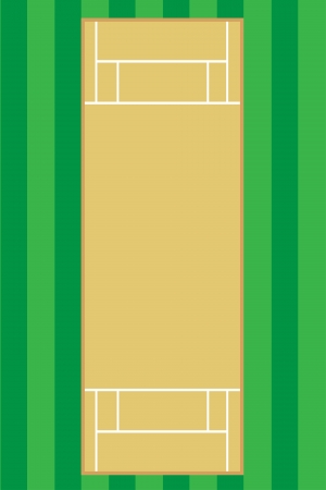 cricet pitch illustration illustration