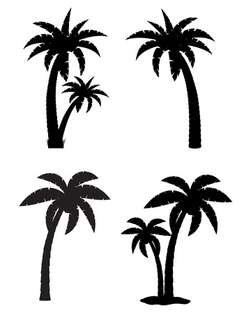 palm tree fruit: palm tropical tree set icons black silhouette isolated on white background Stock Photo