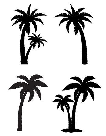 palmier: Palmier tropical icons silhouette noire isol� sur fond blanc