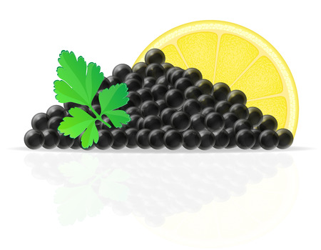black caviar with lemon and parsley vector illustration isolated on white background