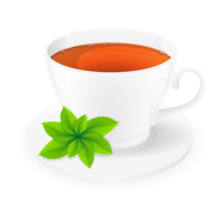 spearmint: porcelain cup of tea with mint vector illustration isolated on white background