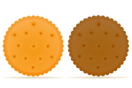 biscuit: crispy biscuit cookie vector illustration isolated on gray background