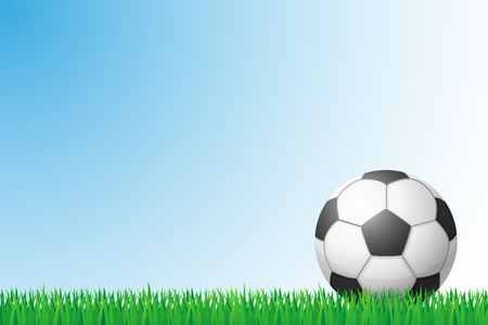soccer grass: soccer grass field vector illustration isolated on background Stock Photo