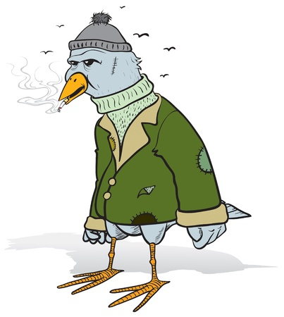 dirty clothes: vector cartoon of an angry tramp bird smoking in his old and dirty clothes Illustration