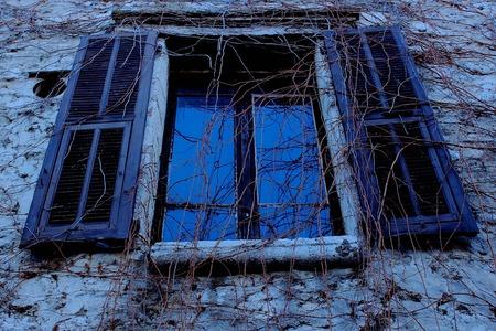 vence: Blue Vined Window, Saint-Paul de Vence, France