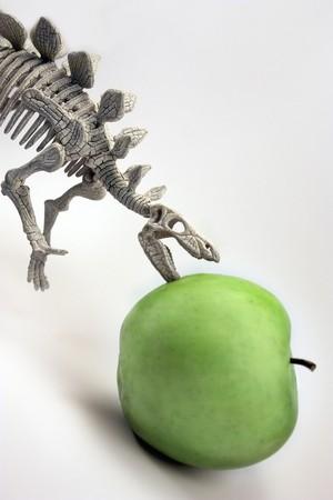 on a white background dinosaur eats green fruit photo