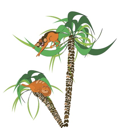 a monkey on palm tree saw cat Vector
