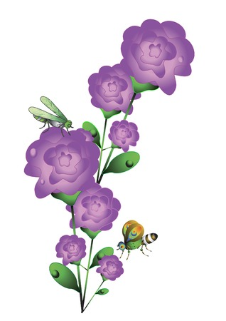 Beautiful roses with butterflies and dragonflies on a white background