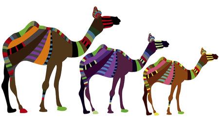 groupe de chameaux sur un fond blanc dans le style ethnique