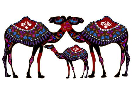 De familie van de camels in de etnische stijl met een witte achtergrond