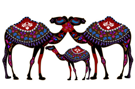 ethnics: Family of camels in the ethnic style with a white background