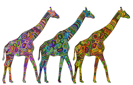 colored giraffes in ethnic style with a white background