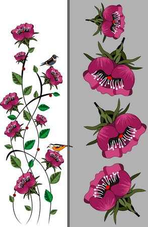 beautiful summer flowers smell sweet and fragrant Vector