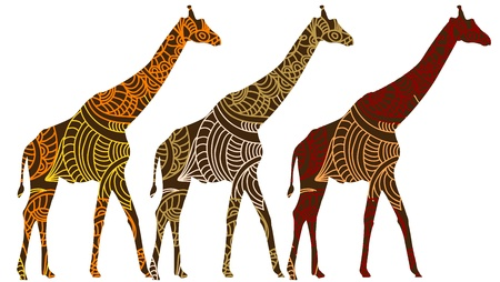 land mammals: African giraffes in the ethnic style on a white background