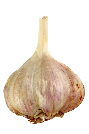 Garlic  isolated on white background, DFF image, Adobe RGB photo