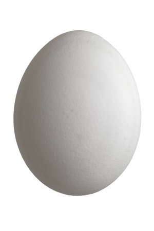 focus stacking: Close up of a white chicken egg isolated on white background