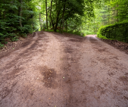 forked road: View of forests asphalt roads intersection, summer, panoramic XXL, Saarland  Germany