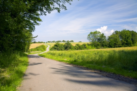 A asphalt fields road in a sunny day, to right cereal field and meadow, evening, by Beckingen, Saarland  Germany,