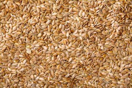 Close up of a flax seed as food background  photo