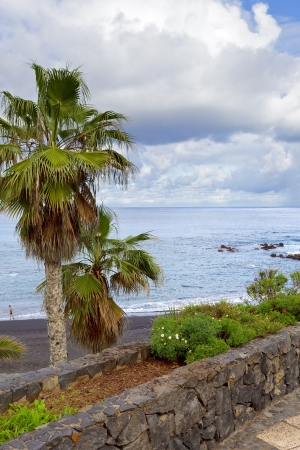 View of Playa de Jardin in Puerto de la Cruz, Tenerife  Spain, december 2012  photo