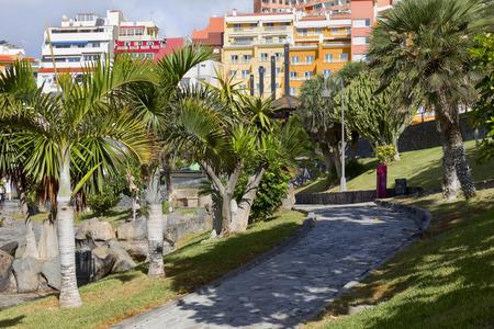 adeje: City Park in city Costa Adeje, Tenerife, Canary Islands, Spain. Stock Photo